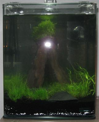 Aquaristik Nano Cube 20 BildNummer2