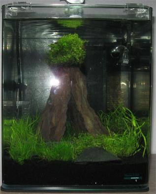 Aquaristik Nano Cube 20 BildNummer3