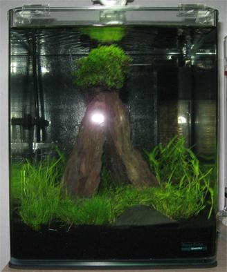 Aquaristik Nano Cube 20 BildNummer5