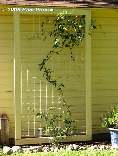 vertical gardening structures Cattle%20panel%20trellis