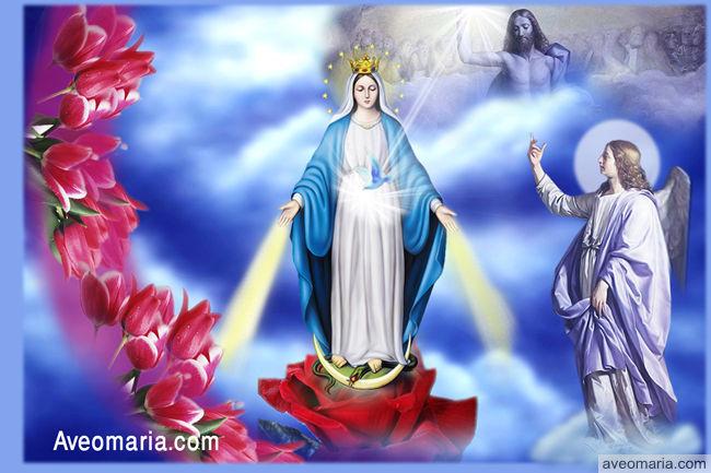 الله يكرم قديسيه Hjm_SGyr_2