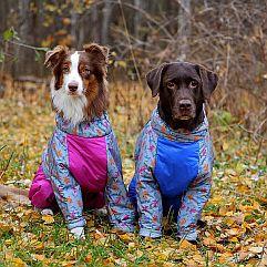OSSO Fashion - лучшие товары для животных,дрессировки,спорта IMG_3818-600-241