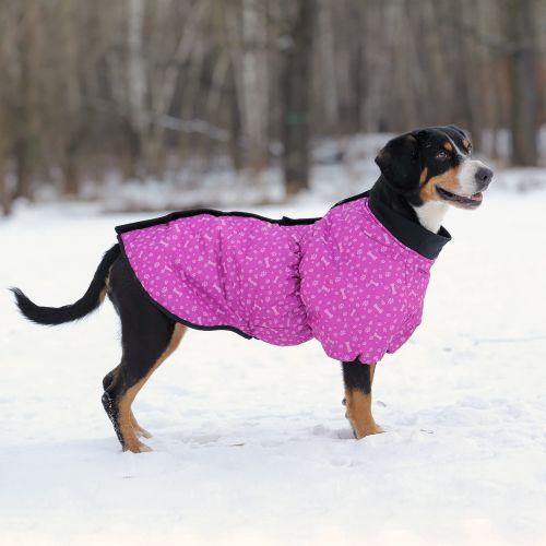 OSSO Fashion - лучшие товары для животных,дрессировки,спорта IMG_7974-500