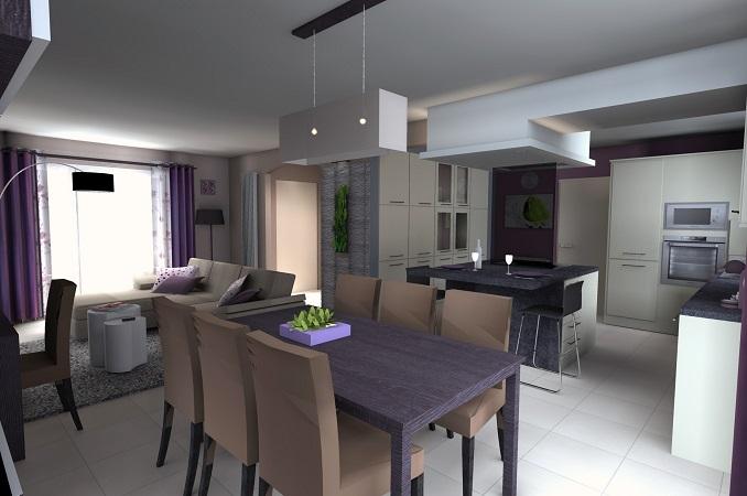 Décoration de ma pièce à vivre Photo-decoration-decoration-salon-salle-a-manger-cuisine