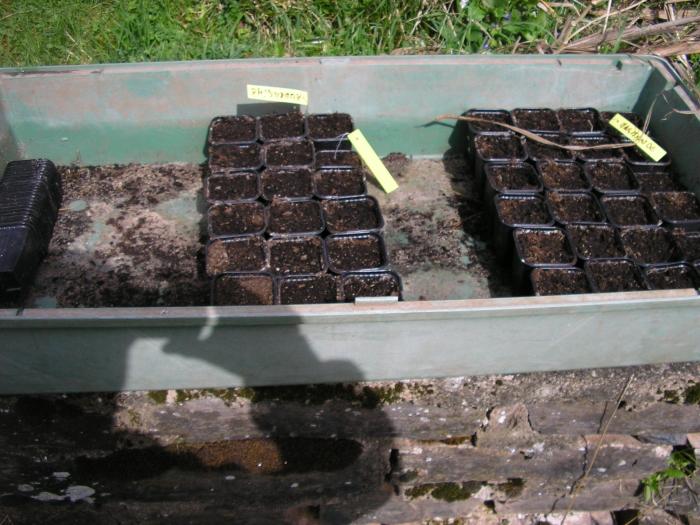 4 saisons au potager (l'almanach du jardinier) M_98262633_0