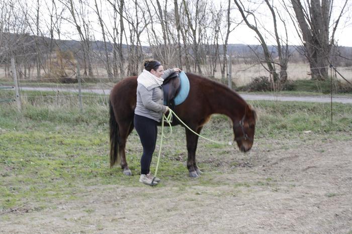 (Dpt 23) UTO, poney 4 ans, réservé par wakan11 !!!!!!!!!!!!!!!! (Déc 2011) - Page 4 M_269420345_0