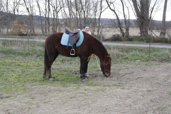 (Dpt 23) UTO, poney 4 ans, réservé par wakan11 !!!!!!!!!!!!!!!! (Déc 2011) - Page 4 M_269420435_0