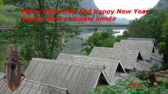 Bonne fête et bonne année 2016 M_449425687_0