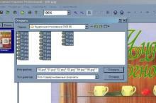 Как сохранить файлы в формате DjVu 3w6d8m-vvl