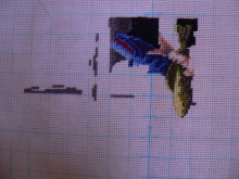 Совместный процесс- Кошаки Dimensions и не только 3y6viy-81t