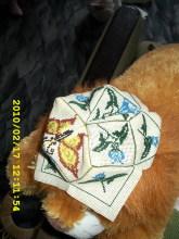 Февраль 2010. Бискорню-Пятиклинка - Страница 2 4elwe1-65b