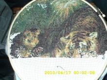отчеты за АПРЕЛЬ месяц 2010 года 4hpu90-uam