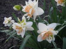 Когда начнется весна? 50um4i-jnc