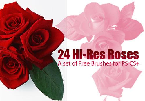 Кисти - Страница 2 Rose-photoshop-brushes-1