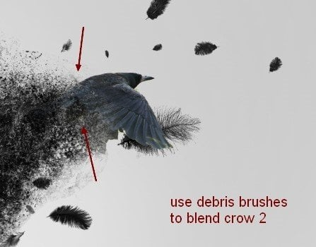 Create A Dark Abstract Crow Photo Manipulation Crow20a