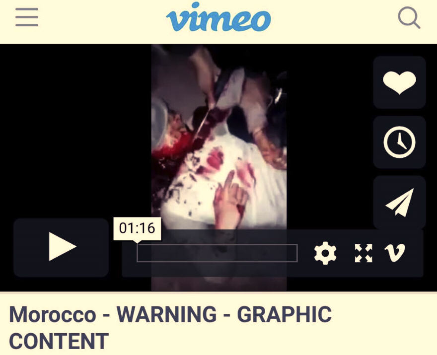 Presseschau - Seite 44 Vimeo