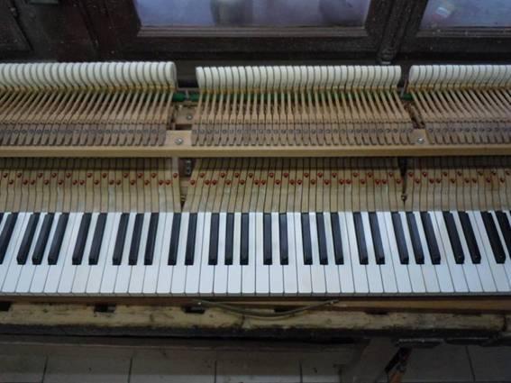 Belgium, Facteur de Pianos et touches en ivoire Image015