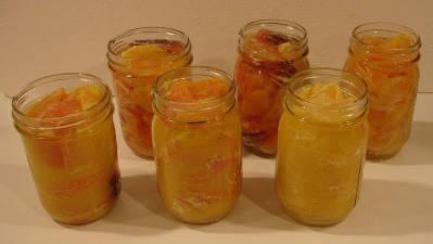 تجميد الخضروات والفواكه Citrusinjarswliq2