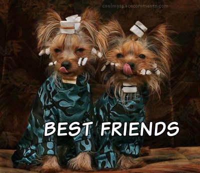 Volim te kao prijatelja, psst slika govori više od hiljadu reči - Page 6 Friends_117
