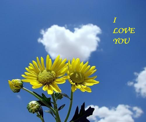 Volim te  - Page 4 Love_019