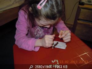 Шевелева Лиза 6 лет  - Страница 3 67448_DSCN2257