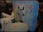 Время кукол № 6 Международная выставка авторских кукол и мишек Тедди в Санкт-Петербурге N9jP1050867PAU.th