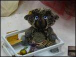 Время кукол № 6 Международная выставка авторских кукол и мишек Тедди в Санкт-Петербурге UNWP1050506DwS.th