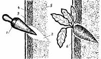 Как построить вертикальную грядку? Doc2fb_image_03000011
