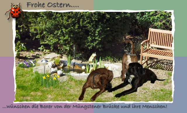 Schöne Ostertage wünsche ich euch ihr Lieben! 2012040539_ostern2012-gerahmt-text