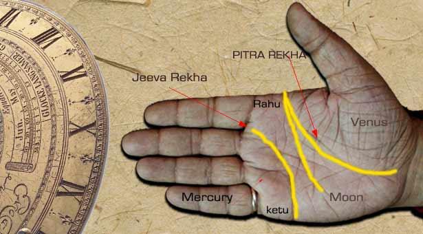 Important lines and divine interpretation. Nadi Jyotisha Hand-jeeva