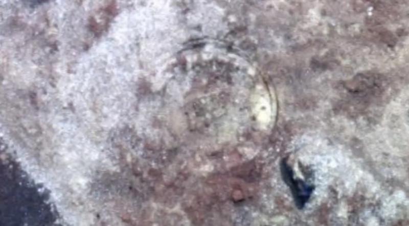 На Марсе нашли космический корабль инопланетян 75903702