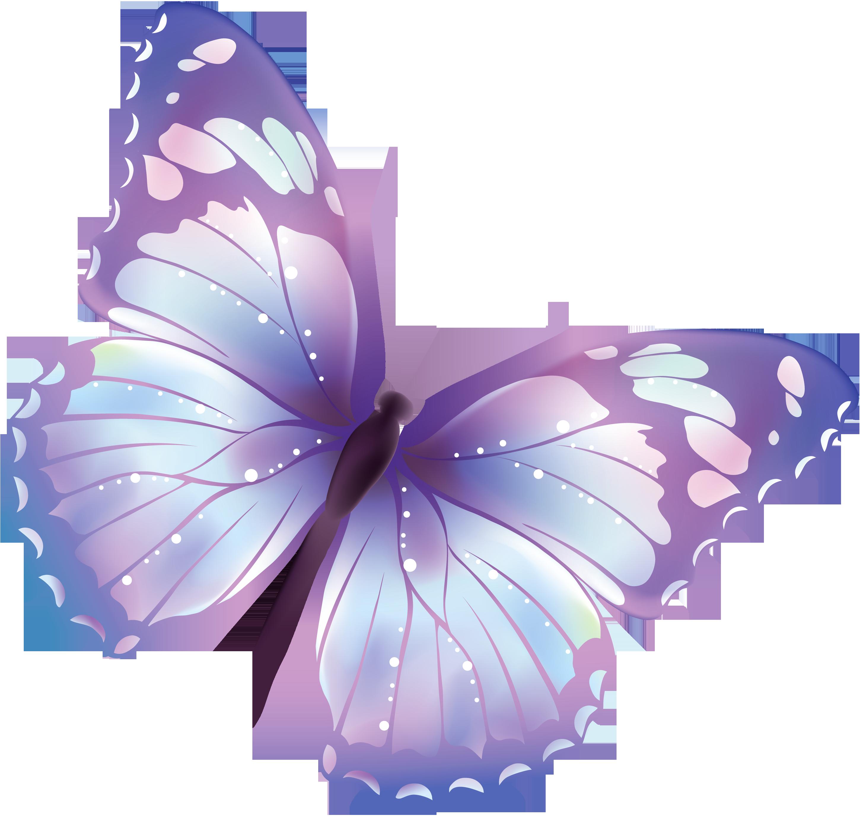 صور فراشة png - صور فراشات مفرغة بصيغة png Butterfly-PNG-3