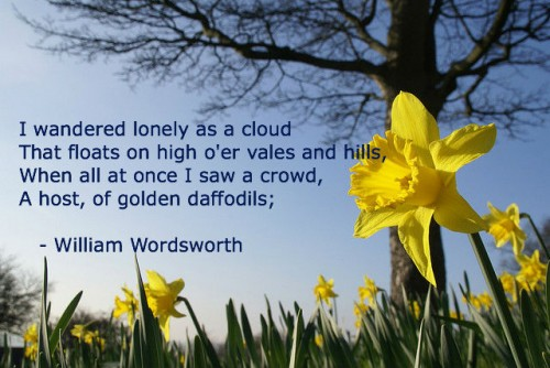 Nature sounds Wordsworth-lonely-daffodils-500x334