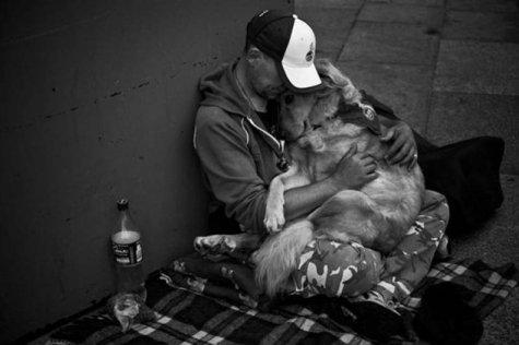 Ljudska dobrota - Page 9 43340_foto_ljudska_dobrota_u_10_fotografija_6_475_316_85_s_c1