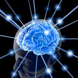 Méditer développerait le cerveau  Subliminal%20cerveau