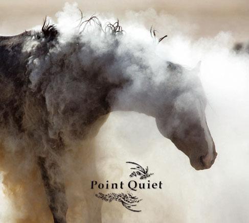 Goth-Country, el sonido western del apocalipsis PQfrontcoverA