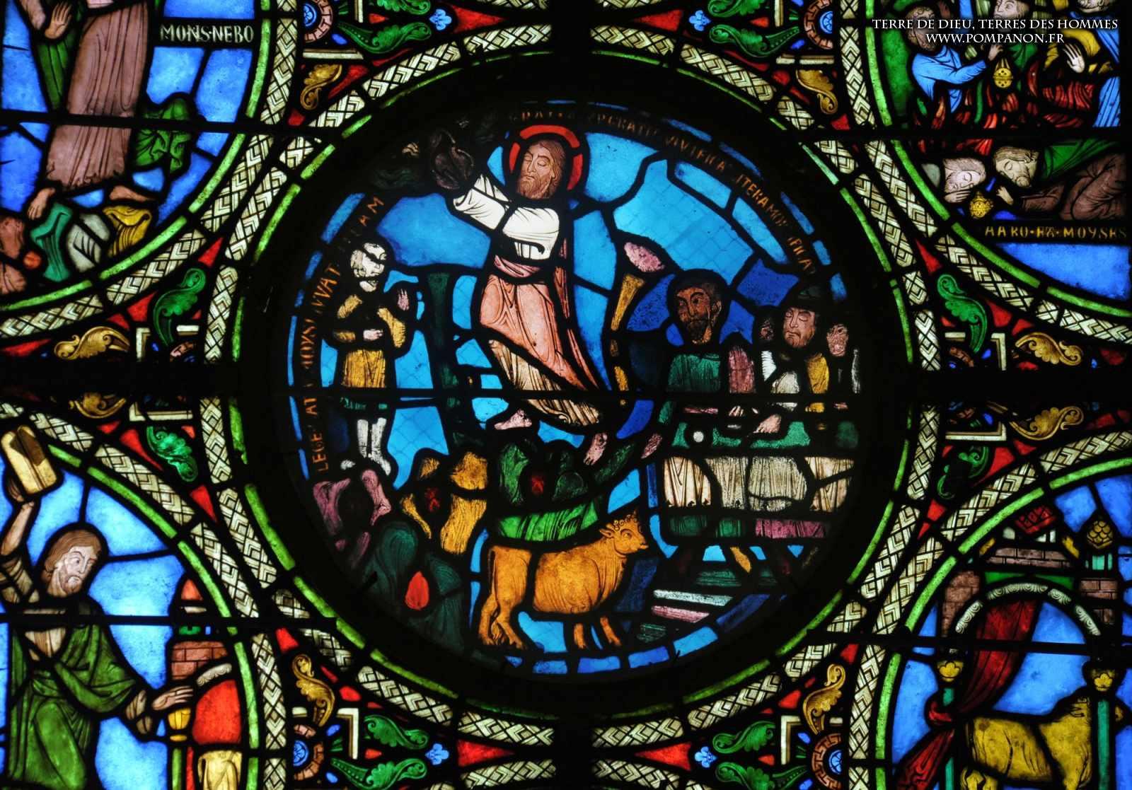 Les vitraux  du XIIIéme siècle . 5043eefcb18dc