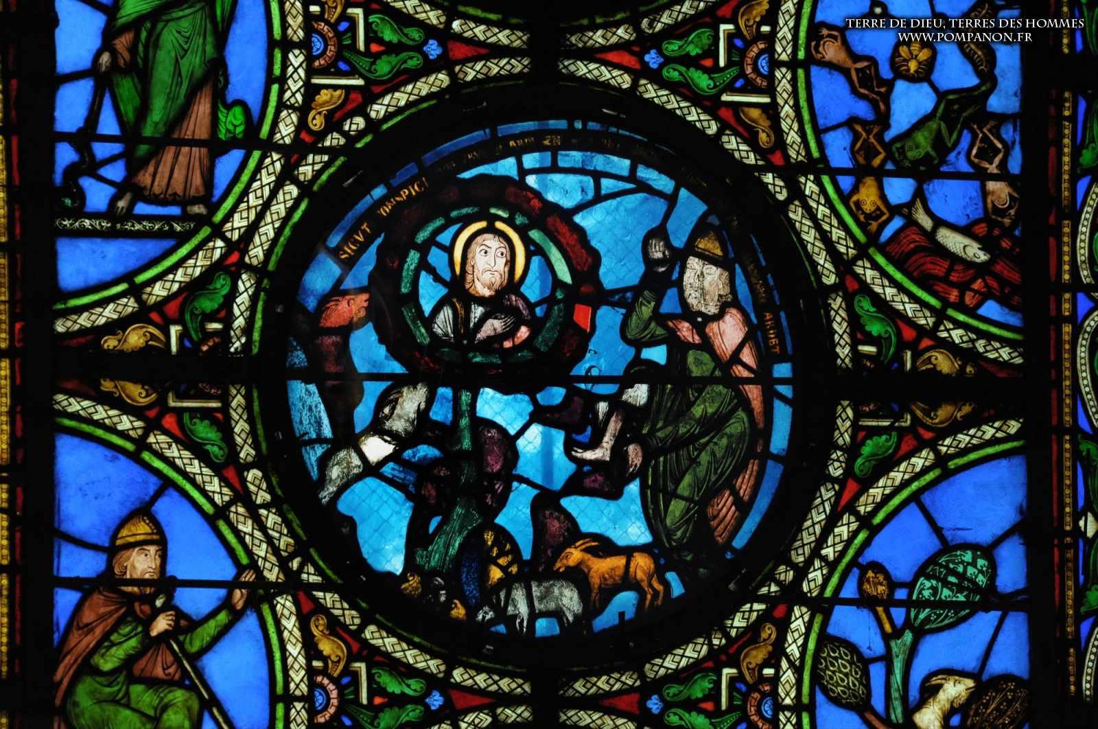 Les vitraux  du XIIIéme siècle . 5043eefcbfe87