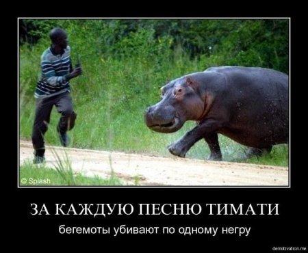 Домохозяйская   СН 1303199137_4