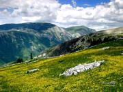 Bosna i Hercegovina AVQ_CaS