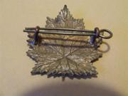 WWI Insignia Gx1Icowi