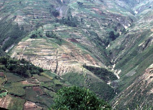 Haiti-Environnement: Bois d'énergie, quelles alternatives??? Paysage_haitien