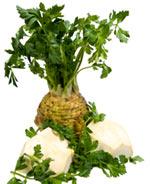 Prirodni lek za holesterol Celer