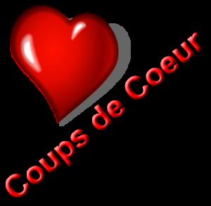 Carnet de lecture d'EmiilieJolie Coup-de-coeur-300x292