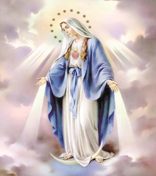 Miracle de Noel 24 12 2019 Christ 22-8-2020_17_34_20_Progres_30