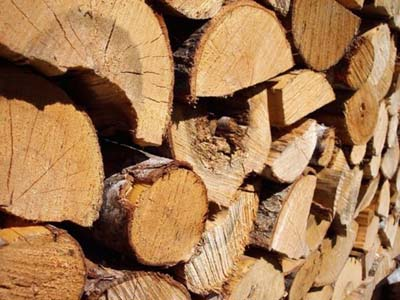 Crise du bois Boischauf