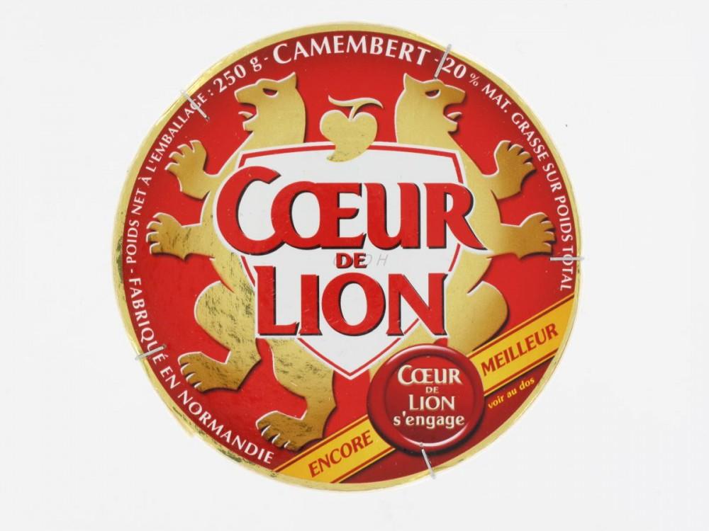Coeur de Loi 3 Camembert-cour-de-lion-250-grs-camemberts---brie