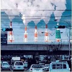 5 juin : Journée Mondiale de l'environnement — Que faites-vous pour l'environnement ? - Page 10 35590-47226-image