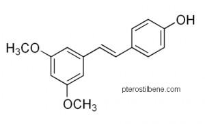 Le vin rouge recélerait-il la clé du nectar de jouvence ? Pterostilbene-300x181