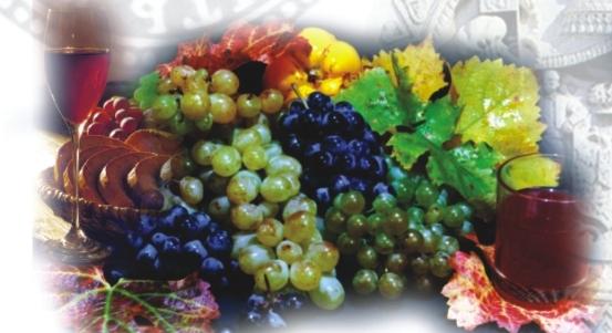 Put vina kroz istoriju Srbije Grozdje
